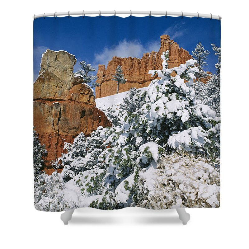 united States Shower Curtain featuring the photograph Red Rock Formations Poke Through A Late by Raymond Gehman