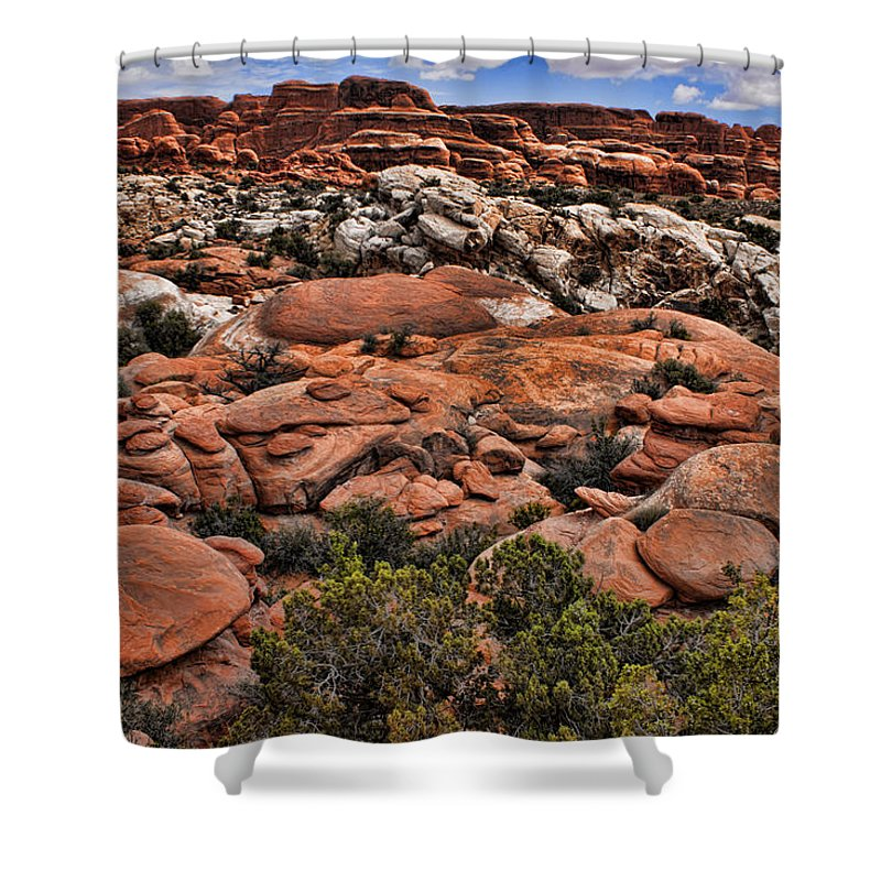 Desert Shower Curtain featuring the photograph Red White And Blue by Karen Ulvestad