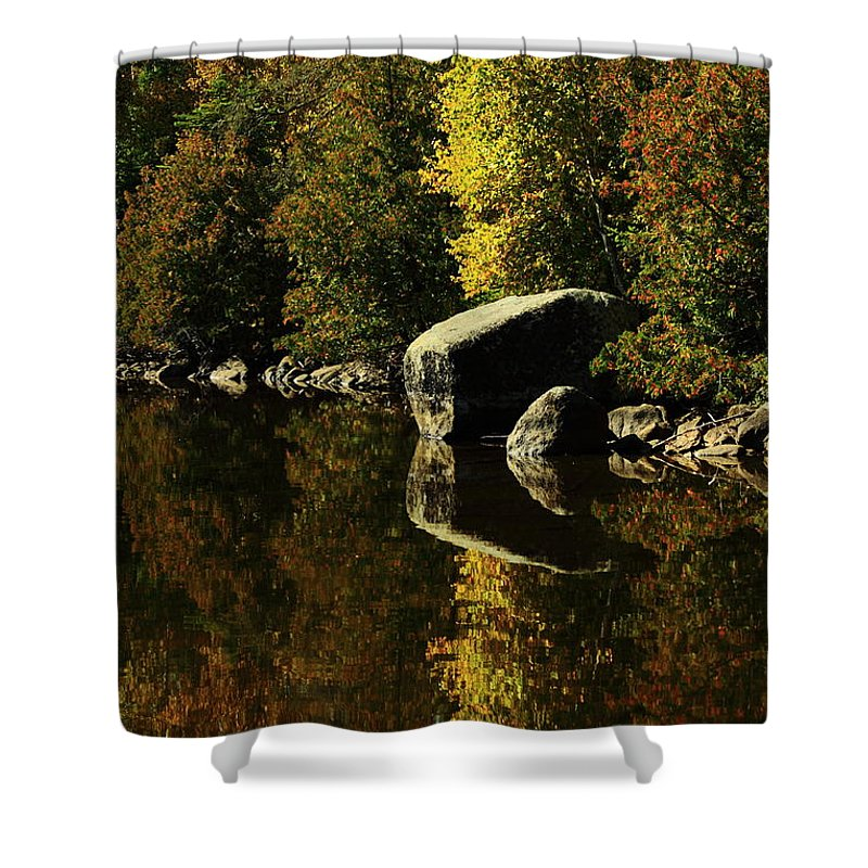 Shower Curtain featuring the photograph Reflections by Joi Electa