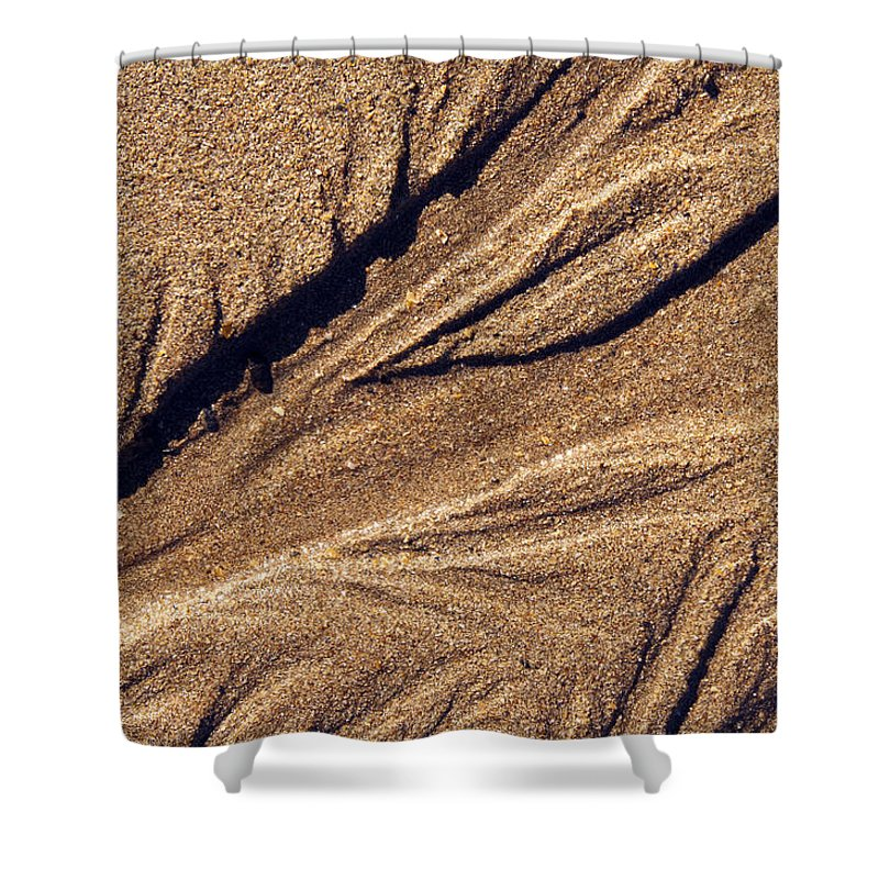 Acadia National Park Shower Curtain featuring the photograph Ripples In The Sand by Glenn Gordon