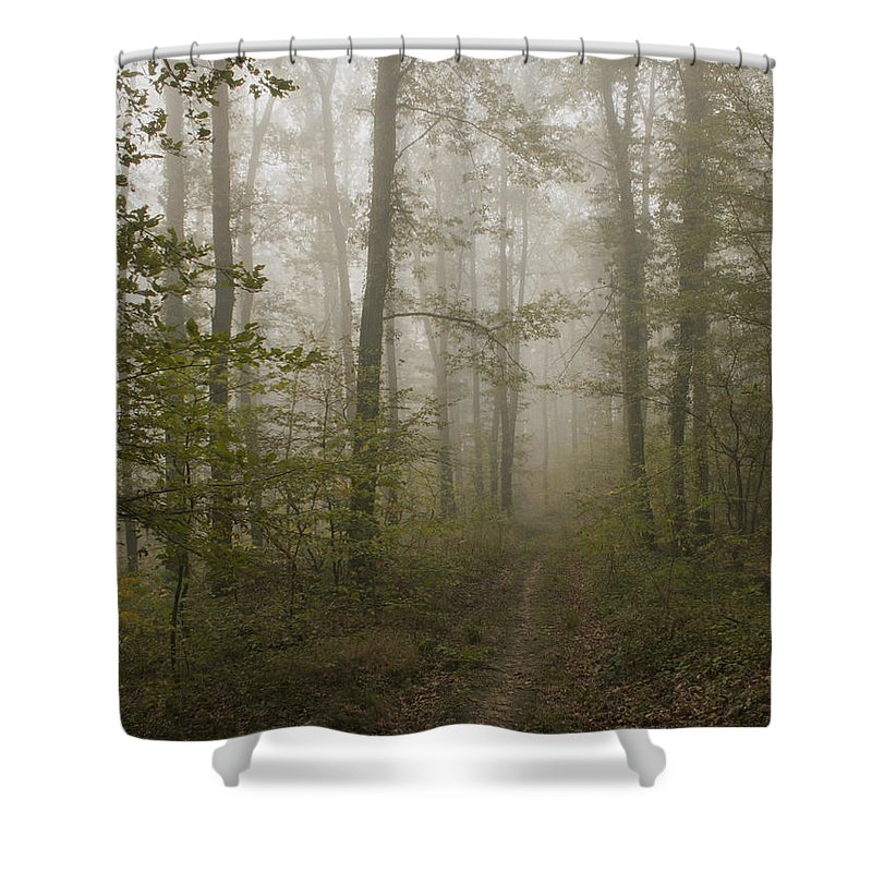 Fog Shower Curtain featuring the photograph Road Of Insecurity by Daniel Csoka