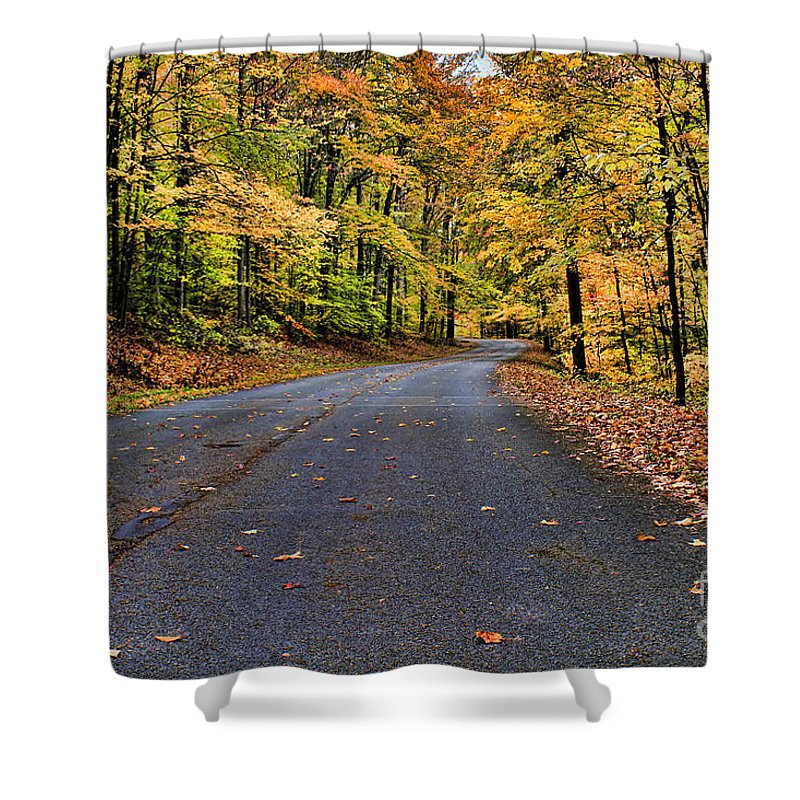 Autumn Shower Curtain featuring the photograph Road To Autumn by Darren Fisher