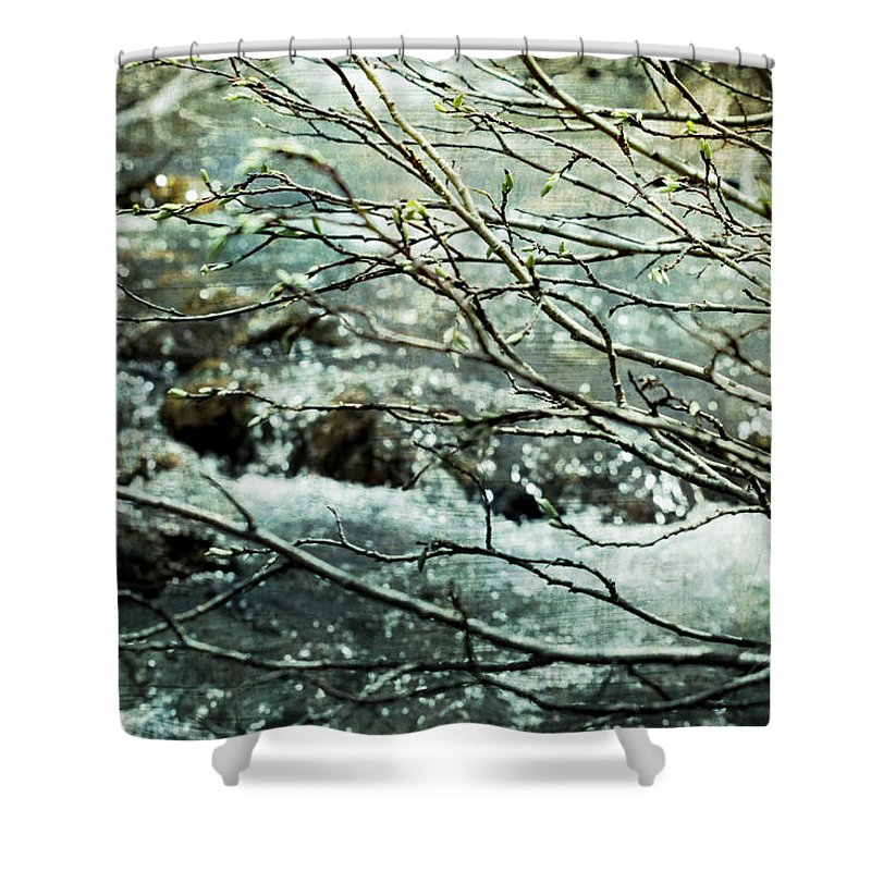 Spring Shower Curtain featuring the photograph Rocky Mountain Stream by Ellen Heaverlo