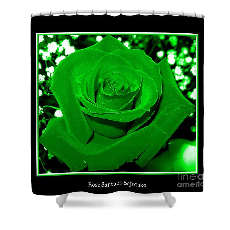 Roses Shower Curtain featuring the photograph Rose With Green Coloring Added by Rose Santuci-Sofranko