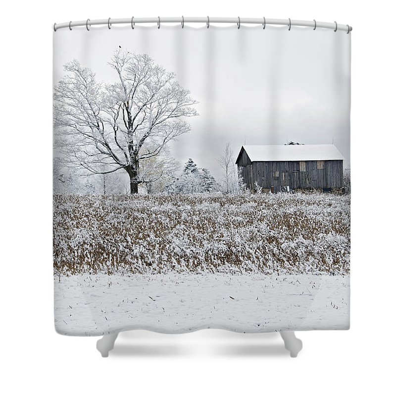 Rural Shower Curtain featuring the photograph Rural Winter by Elaine Mikkelstrup