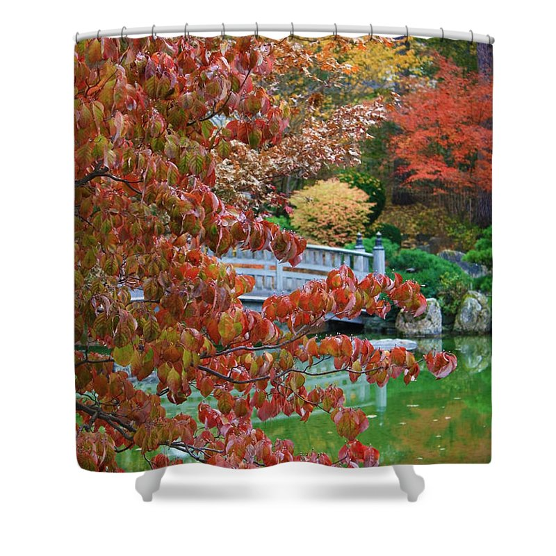 Autumn Landscape Shower Curtain featuring the photograph Rust Colored Leaves Over Autumn Pond by Carol Groenen
