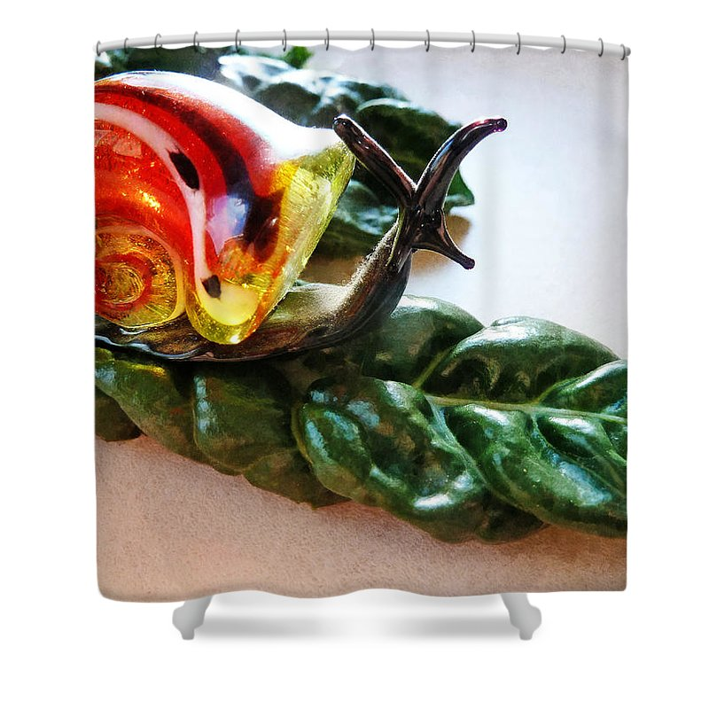 Salad Dressing Shower Curtain featuring the photograph Salad Dressing by Steve Taylor