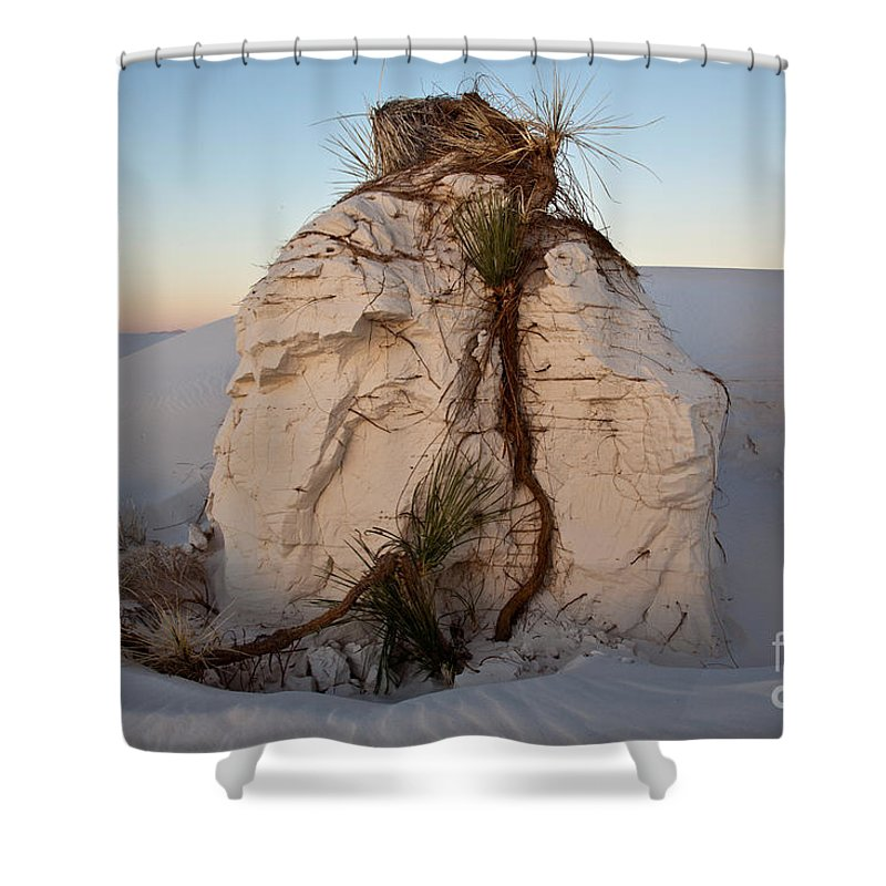 White Sands Shower Curtain featuring the photograph Sand Pedestal With Yucca by Greg Dimijian