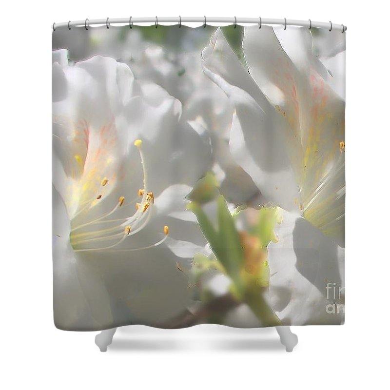 Nature Shower Curtain featuring the photograph Satin White Azaleas by Debbie Portwood