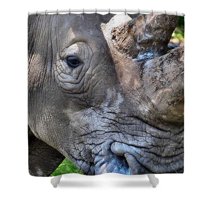 Rhinoceros Shower Curtain featuring the photograph Save Me by Art Dingo