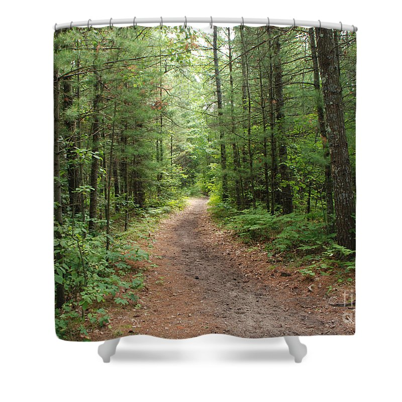 Huron National Forest Shower Curtain featuring the photograph Scenic Walk by Grace Grogan