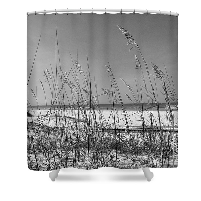 Sea Oats Shower Curtain featuring the photograph Sea Oats by John Black