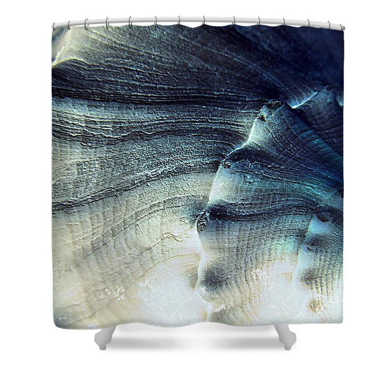 Sea Shower Curtain featuring the photograph Sea Shell by Renee Trenholm