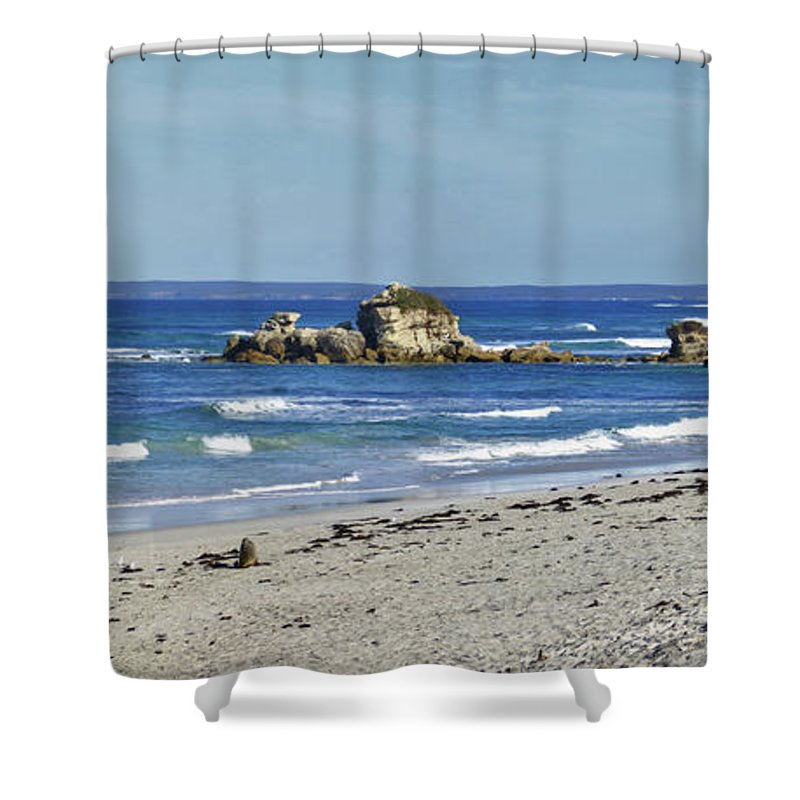 Beach Shower Curtain featuring the photograph Seal Bay Beach by Stephen Mitchell