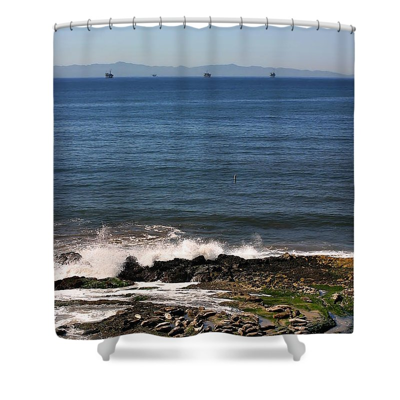 Seal Shower Curtain featuring the photograph Seals by Henrik Lehnerer