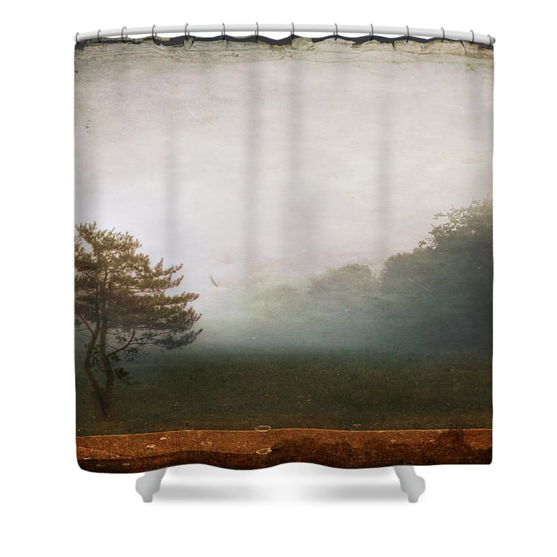 Tree Shower Curtain featuring the photograph Season Of Mists by Evelina Kremsdorf