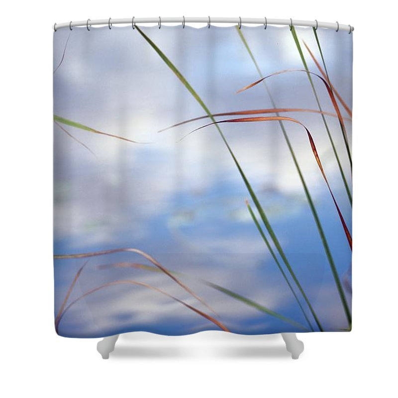 everglades National Park Shower Curtain featuring the photograph Sedges And Sky by Raymond Gehman