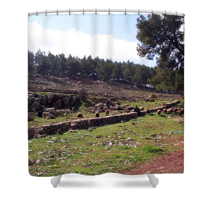Shepherd Shower Curtain featuring the photograph Shepherd At Solomon's Pools by Munir Alawi