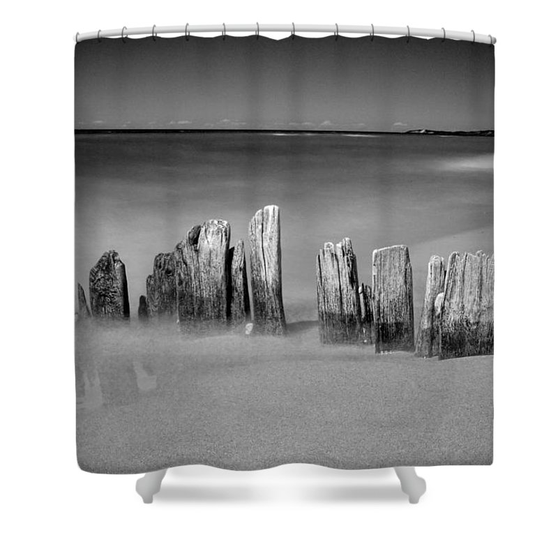 Art Shower Curtain featuring the photograph Shore Pilings On A Beach Near Arcadia Michigan by Randall Nyhof