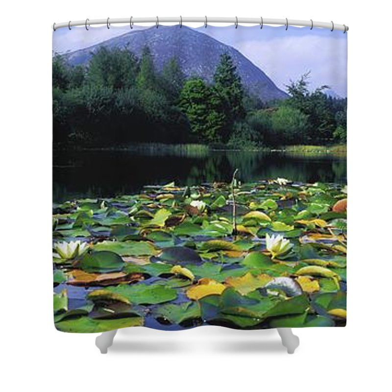 Blooming Shower Curtain featuring the photograph Silent Valley, Mourne Mountains by The Irish Image Collection
