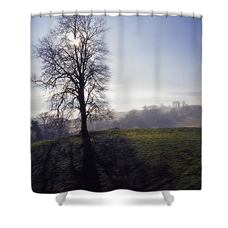 Nature Shower Curtain featuring the photograph Silhouette Of Tree by Gareth McCormack