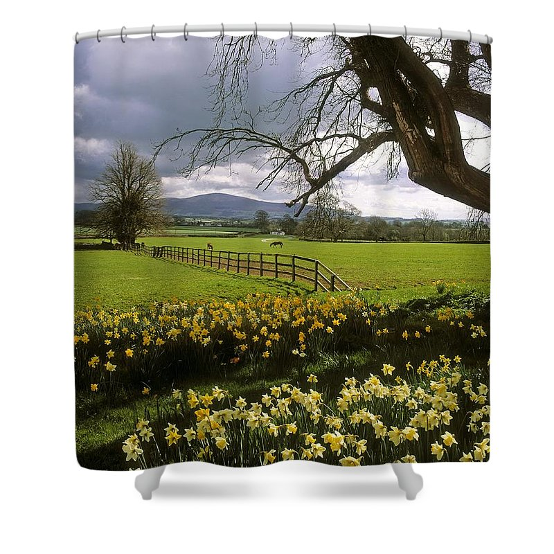 Ardsallagh Shower Curtain featuring the photograph Slievenamon, Ardsallagh, Co Tipperary by The Irish Image Collection