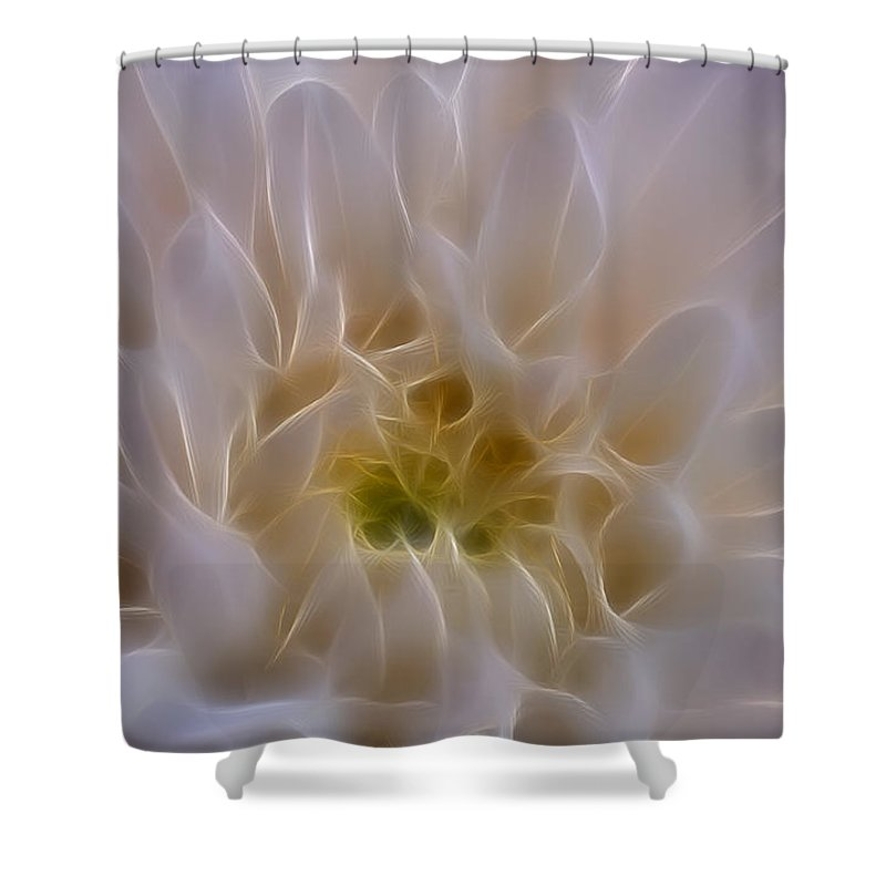 Flower Shower Curtain featuring the photograph Soft Light by Ivelina G