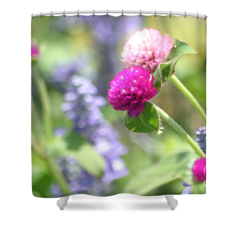 Floral Shower Curtain featuring the photograph Softness In The Garden by Living Color Photography Lorraine Lynch