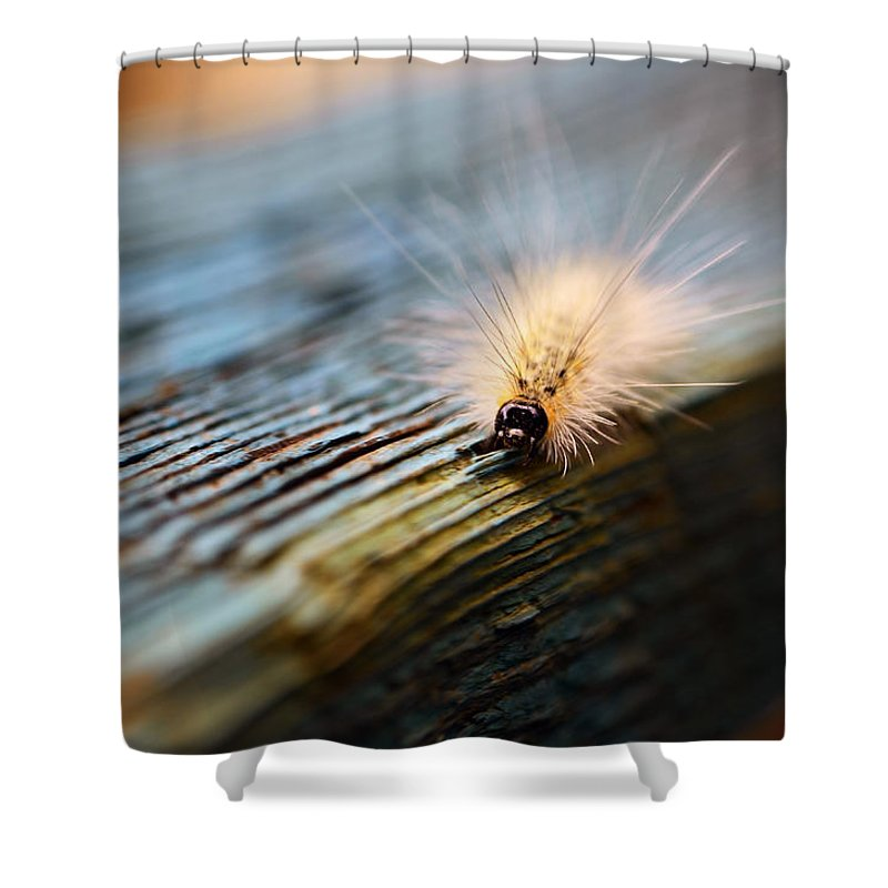Caterpillar Shower Curtain featuring the photograph Something Wicked This Way Comes by Lori Tambakis