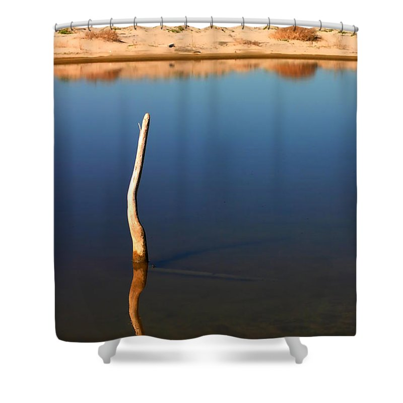 Tree Shower Curtain featuring the photograph Stick In The Water by Henrik Lehnerer