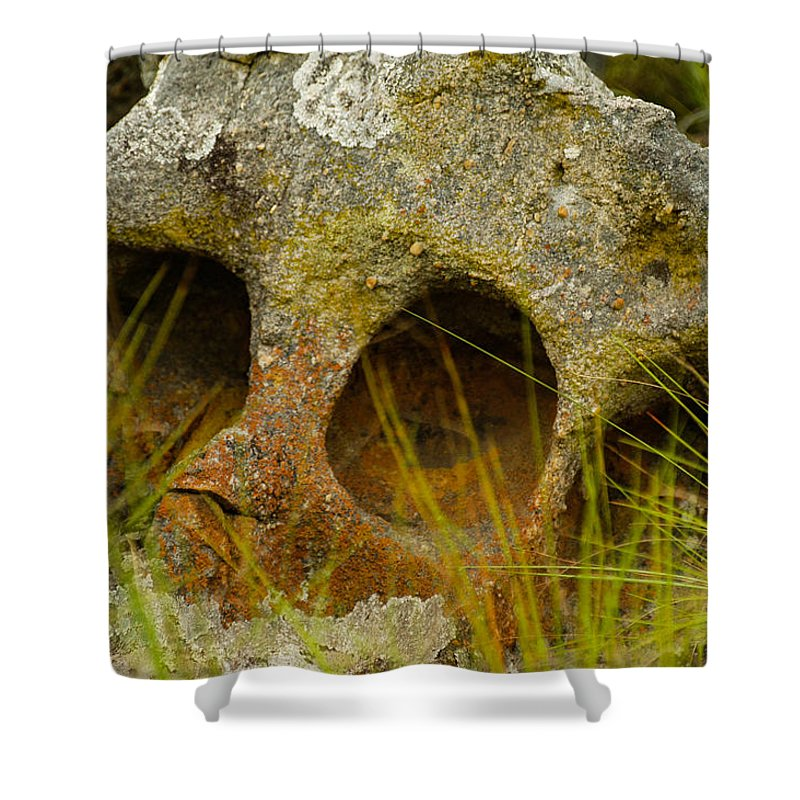 Africa Shower Curtain featuring the photograph Stone Skull by Alistair Lyne