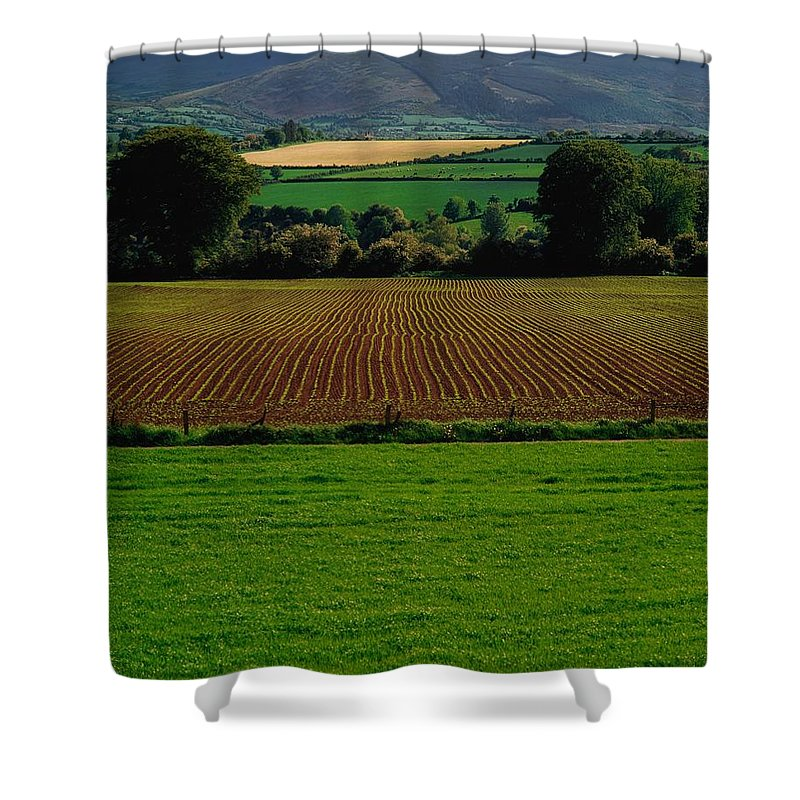 Beauty In Nature Shower Curtain featuring the photograph Sugar Beet by The Irish Image Collection