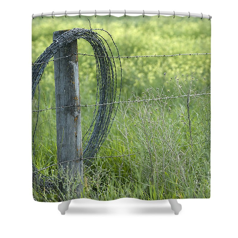 Sandra Bronstein Shower Curtain featuring the photograph Summer Repairs by Sandra Bronstein