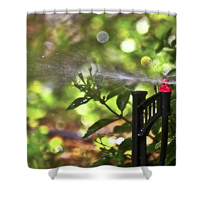 Watering Garden Shower Curtain featuring the photograph Summertime Refreshment by Carolyn Marshall