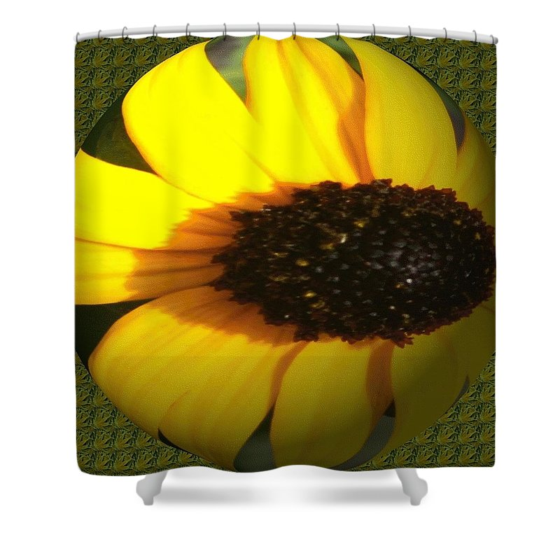 Shower Curtain featuring the photograph Sunny Side by Barbara S Nickerson
