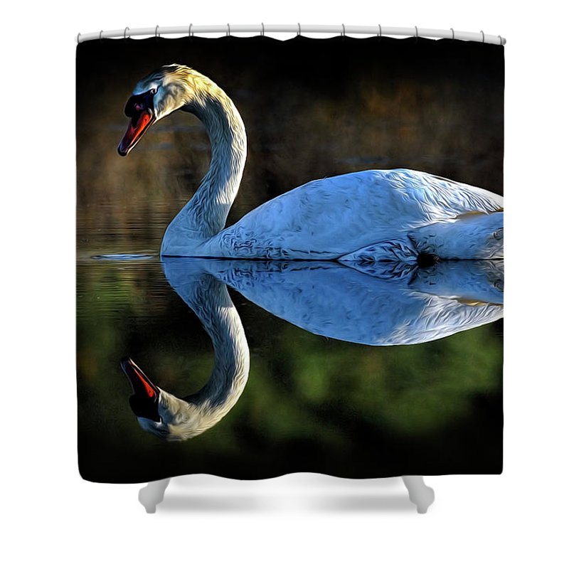 Swan Shower Curtain featuring the photograph Swan by Dave Mills
