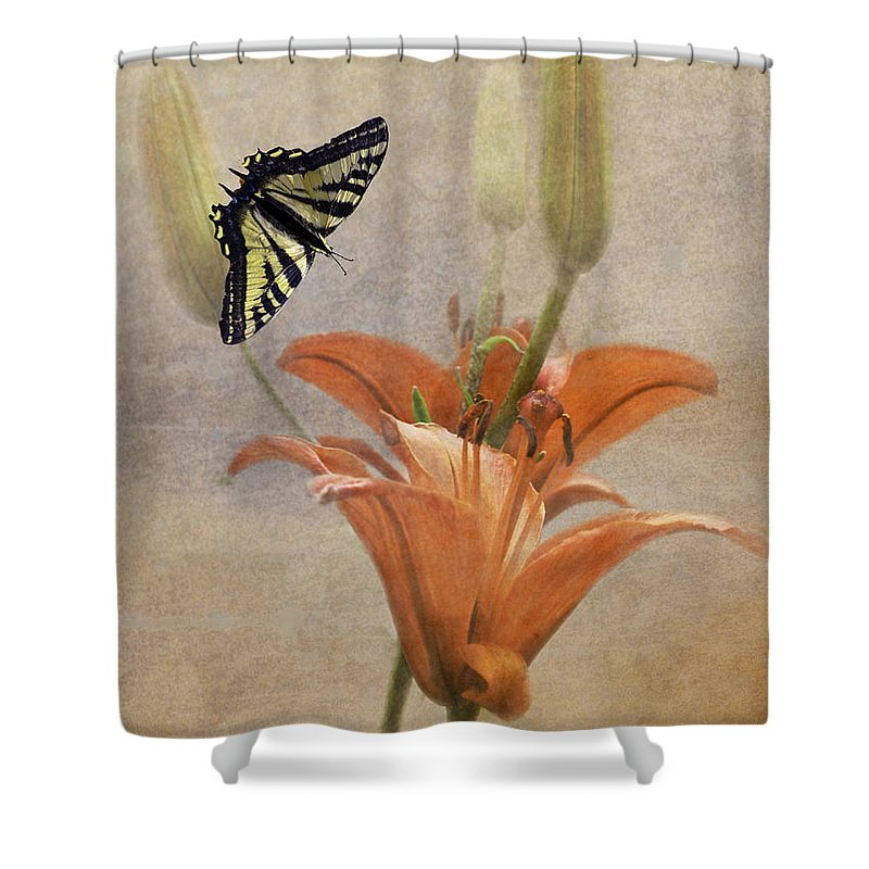 Lily Shower Curtain featuring the photograph Sweet Orange Spice by Diane Schuster
