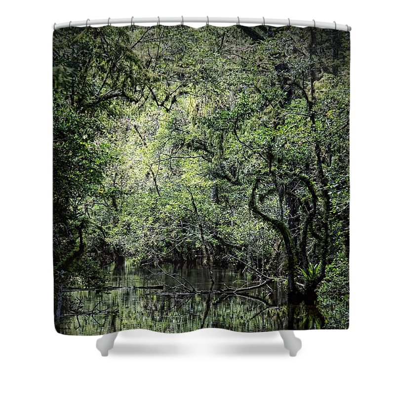 Everglades Shower Curtain featuring the photograph Sweetwater Strand by Rudy Umans