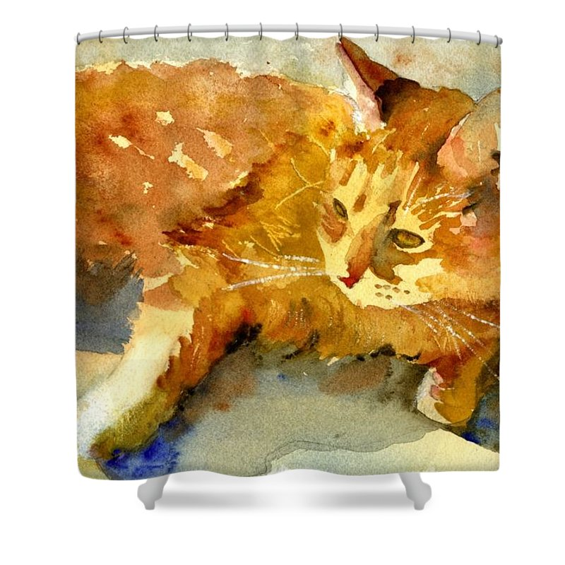 Art Shower Curtain featuring the painting Tabby Lights by Miriam Schulman