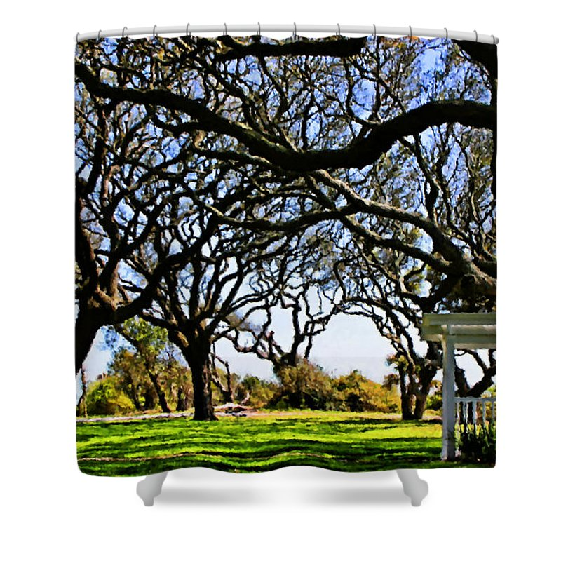 Live Oaks Shower Curtain featuring the digital art Tangled by Kristin Elmquist