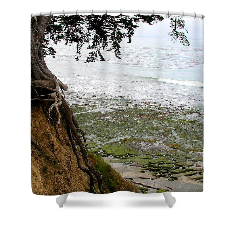 Landscape Shower Curtain featuring the photograph Tangled Overlook by Kathleen Grace