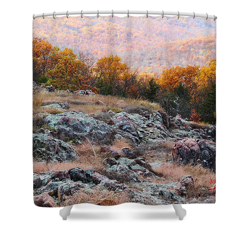 Landscape Shower Curtain featuring the photograph Taum Sauk Mountain Glade I by Greg Matchick