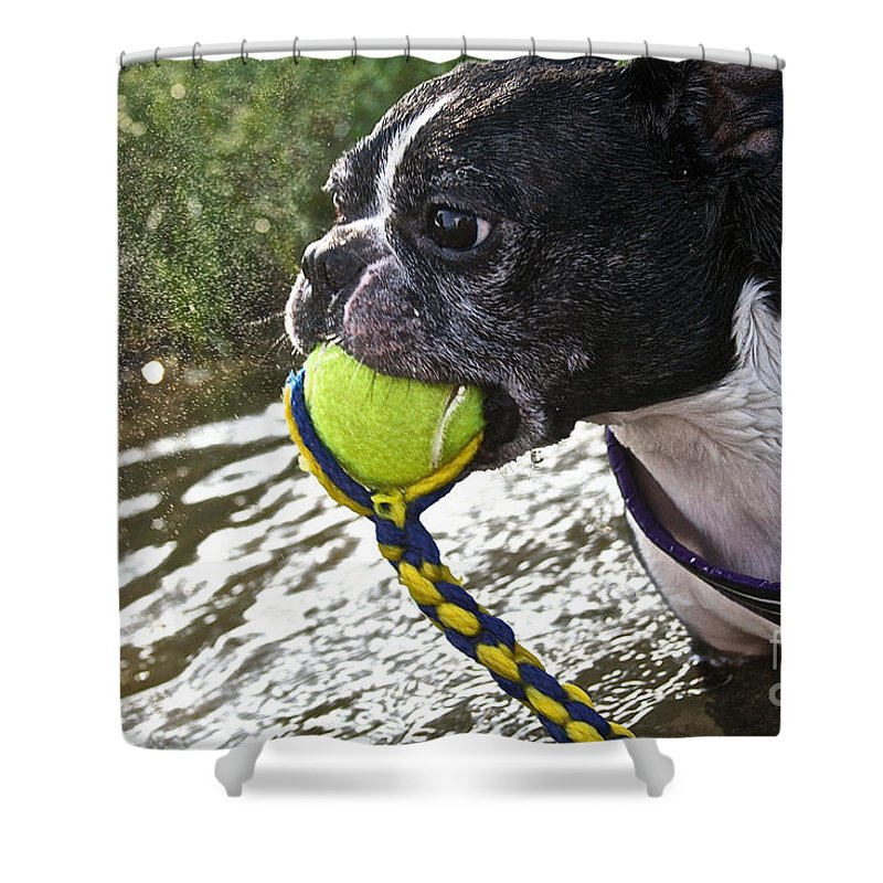 Outdoors Shower Curtain featuring the photograph Tennis Ball Mist by Susan Herber