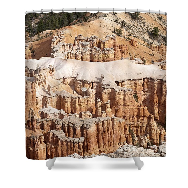 Landscape Shower Curtain featuring the photograph The Allligator by Sandra Bronstein