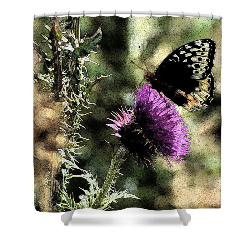 Fine Art Shower Curtain featuring the photograph The Butterfly IIi by Donna Greene