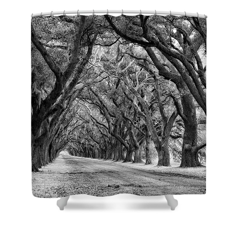 Evergreen Plantation Shower Curtain featuring the photograph The Deep South Monochrome by Steve Harrington