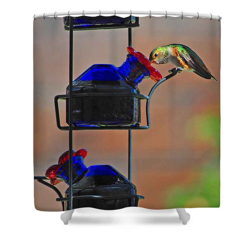Hummer Shower Curtain featuring the photograph The Drink by Lynn Bauer
