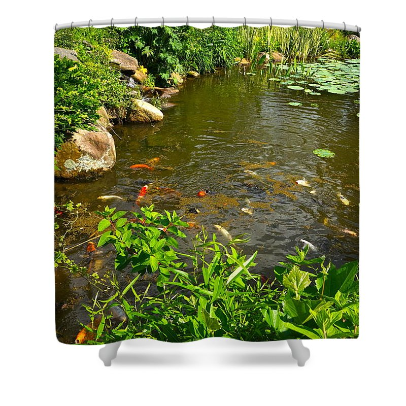 Koi Shower Curtain featuring the photograph The Koi Are Feeding by Byron Varvarigos
