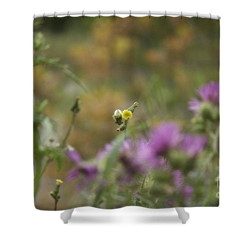 Sicilia Shower Curtain featuring the photograph The Lonely One by Donato Iannuzzi