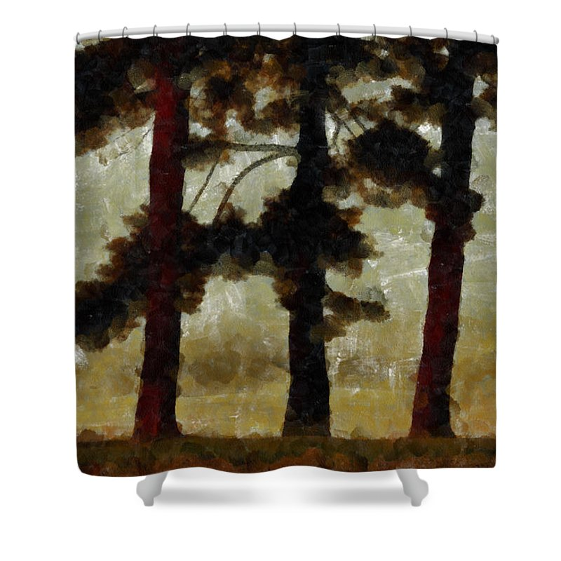 Tree Shower Curtain featuring the photograph The Morning Stroll by Trish Tritz